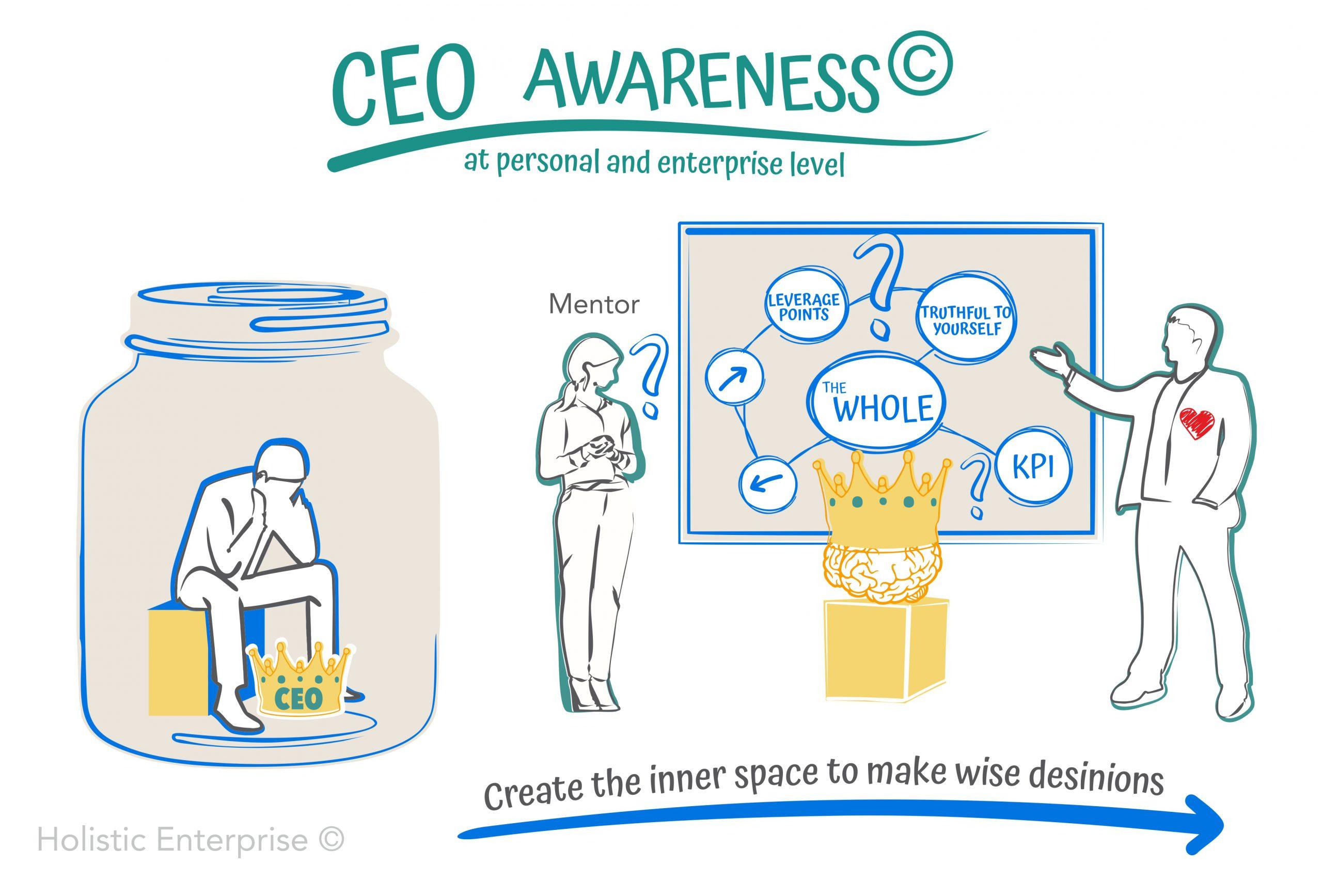 CEO holistic enterprise lean coaching